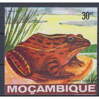 [2206] Мозамбик 1985. Фауна.Лягушка. БЛОК. MNH