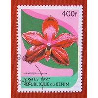 Бенин. Цветы. ( 1 марка ) 1997 года.