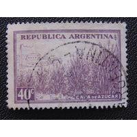 Аргентина. Флора.