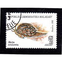 Мадагаскар.Ми-1421.Маленькая Арфа (Harpa amouretta). Серия: Моллюски.1993.