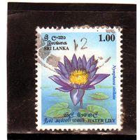 Шри-Ланка.  Mi:LK 1077. Водная лилия. 1995.