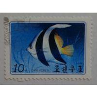 Корея.1986.рыбка