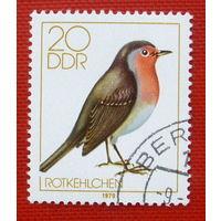 ГДР. Птица. ( 1 марка ) 1979 года.