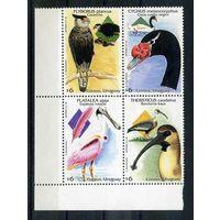 Уругвай 1998г. птицы, 4шт. кварт-блок