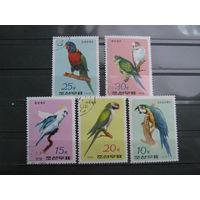 Марки - фауна, Корея, птицы, попугаи