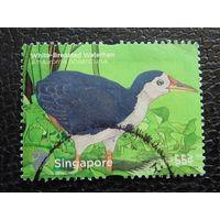 Сингапур 2011г. Птицы.