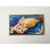 Монголия 1991. Коты и кошки