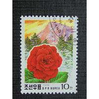 Корея 1996г. Цветы.