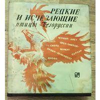 Редкие и исчезающие птицы Белоруссии. Беларуси