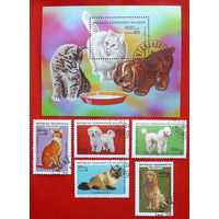 Мадагаскар. Собаки и кошки. ( Блок и 5 марок ) 1985 года.