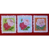 Вьетнам. Розы. ( 3 марки ).