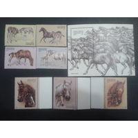 Киргизия 1995 Лошади полная серия