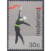 Нидерланды спорт