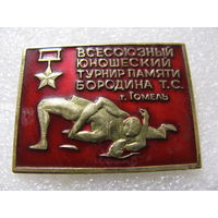 Знак. Всесоюзный юношеский турнир памяти Бородина Т.С. г. Гомель, латунь