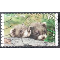 2017 - почтовая марка  - Детёныши -  Германия