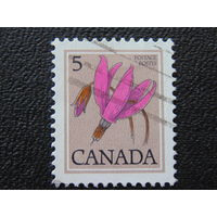 Канада. Флора.