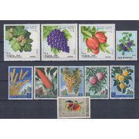 [1985] Флора.Плоды.Фрукты. 10 чистых марок. MH