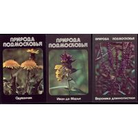 3 календарика Природа Подмосковья