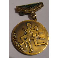 Медалька за 3 место в соревнованиях п/л Зубрёнок.