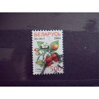 Беларусь гашеная, разновидность множественная печать УФ-защиты вся марка покрыта оттисками, флора