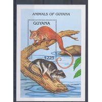 [201] Гайана 1992.Фауна.  БЛОК.