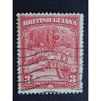 Британская Гайана. Добыча золота.