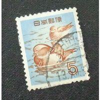 Мандариновая утка. Япония. Дата выпуска:1955-09-10