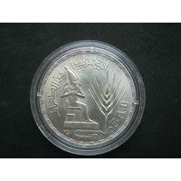 Египет 1 фунт 1976 г.
