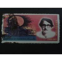 Пакистан 2006 художник, живопись