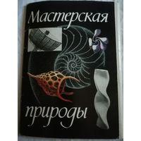 """Комплект познавательных открыток для детей """"Мастерская природы"""" 1981 г."""