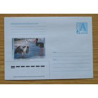 Беларусь 2003 фауна птицы цапля чёрный аист