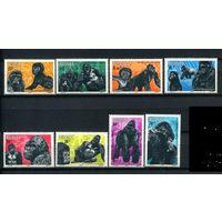 Руанда - 1983г. - Горные гориллы - полная серия, MNH [Mi 1242-1249] - 8 марок