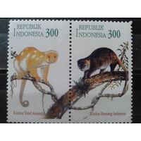 Индонезия 1996 Обезьяны** сцепка. Совм. выпуск с Австралией