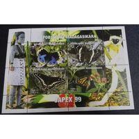 Мадагаскар, фауна, бабочки, мотыли, лист, распродажа
