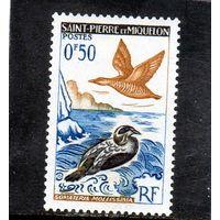Сен-Пьер и Микелон .Ми-398. Утка Айдер(Somateria mollissima). Серия: птицы.1963.