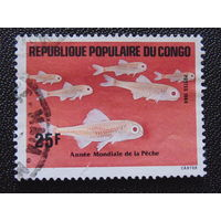 Конго 1984г. Рыбы.