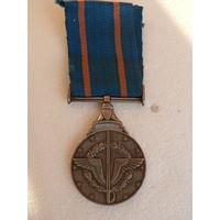 Медаль за военную службу,  Египет