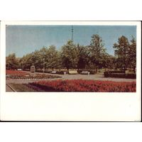 1966 год Минск Парк имени 30 летия БССР