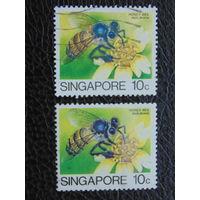 Сингапур. Насекомые.