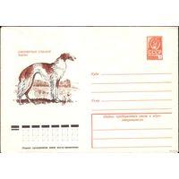 1978 год ХМК Борзая 78-598