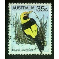 Австралия 1980 Mi# 716 (AU017) гаш.