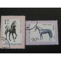 Албания 1992 лошади
