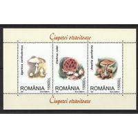 2003 Румыния Флора Грибы кб