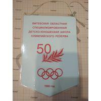 Вымпел Витебская областная специализированная ДЮШОР 50 1999 год