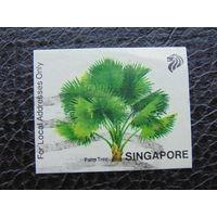 Сингапур. Пальма.