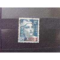 Французская колония Алжир (3-14)
