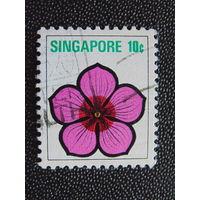 Сингапур. Флора.