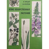 Атлас лекарственных растений, 1981г.