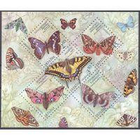 Украина фауна бабочки