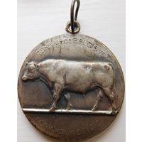 14. Бельгийская медаль*
